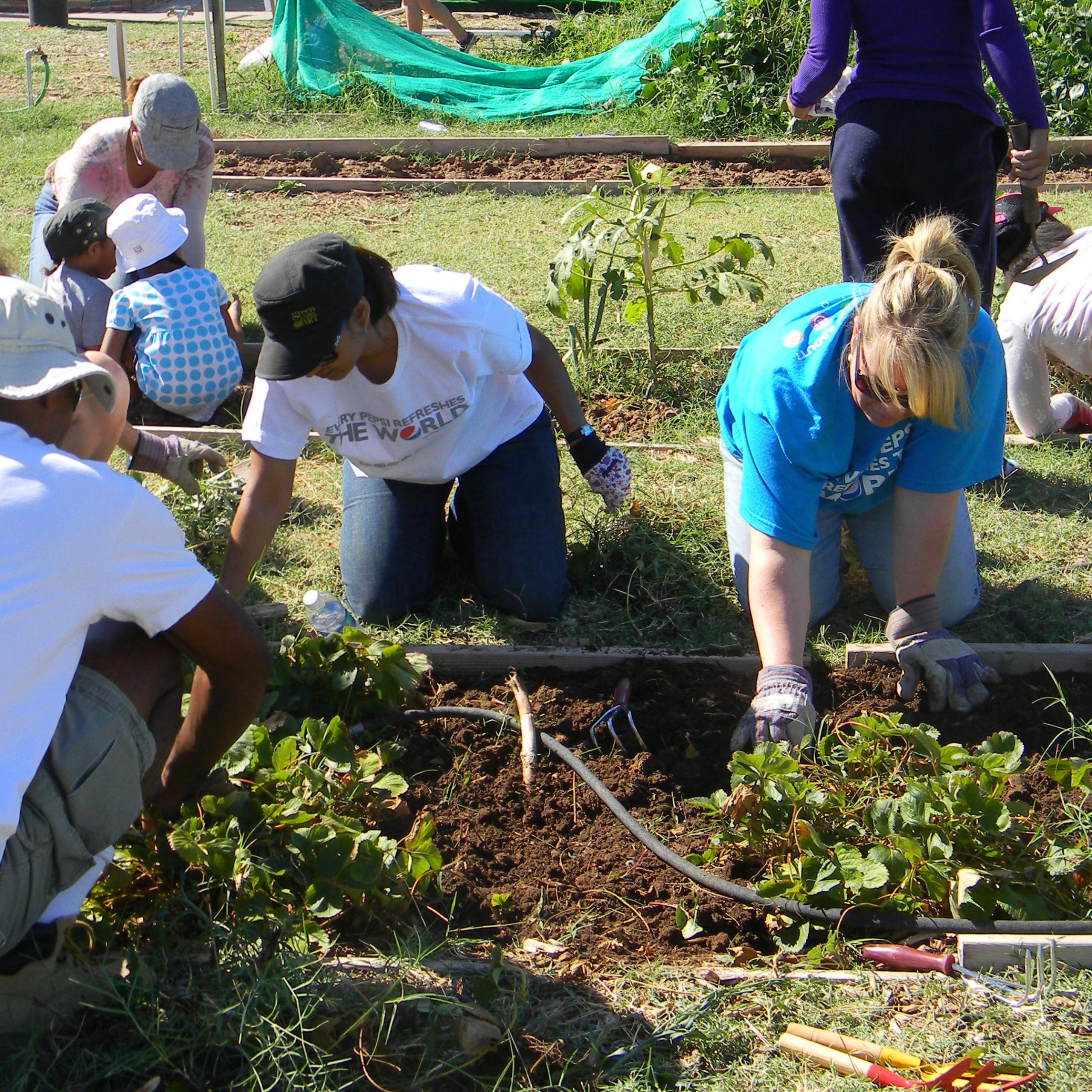 TigerMountain Foundation Working in the Garden | Phoenix, AZ